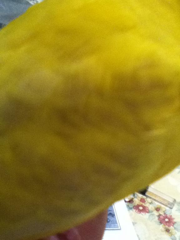 Sam's Strange Feathers...-004.jpg