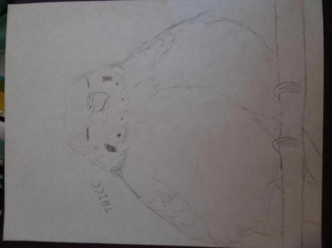 Henlo I drew scarlet macaw-1523314331956-1617327047_1523314352195.jpg
