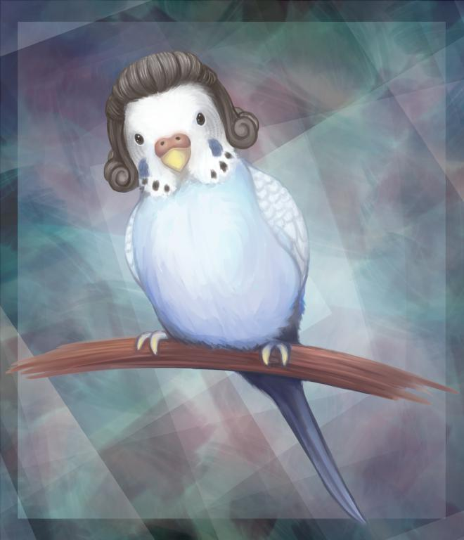 Budgie in a wig-2015-07-06-budgie-dream-png.jpg