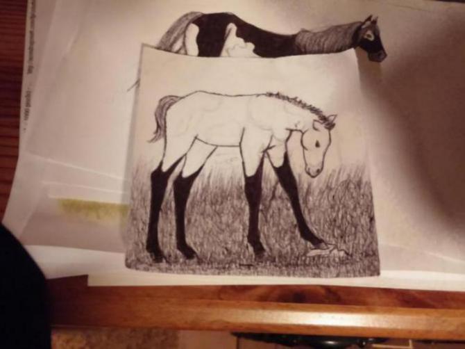 My drawings-20150713_114650_1443557387885.jpg