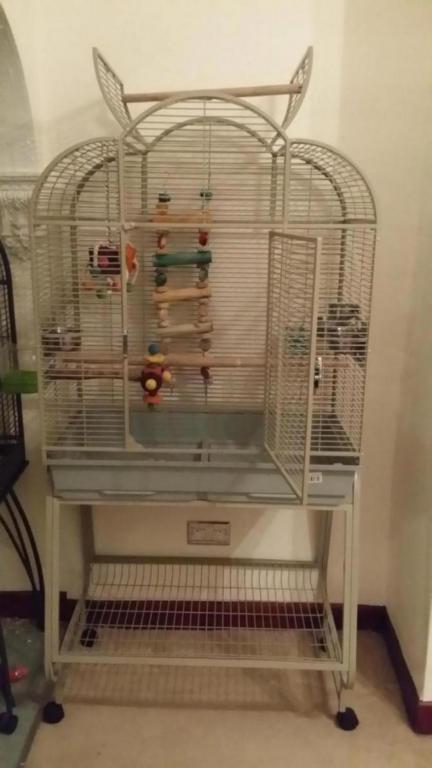 my new cage-20151011_200508_1444594393555.jpg