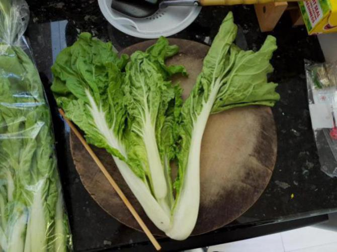 Can I feed these vegetables to my busgies?-20170903_131737_1504488168761.jpg