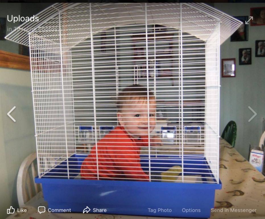 Return of the Budgie (cage help!)-97eab574-362b-48a8-b800-b57cff93f990.jpg