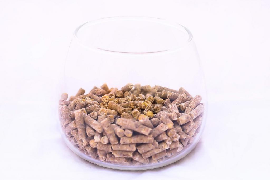Found a new food-avian_complete_pellets_6ce386e5-9e43-4cb7-b43e-fef97d372f22.jpg