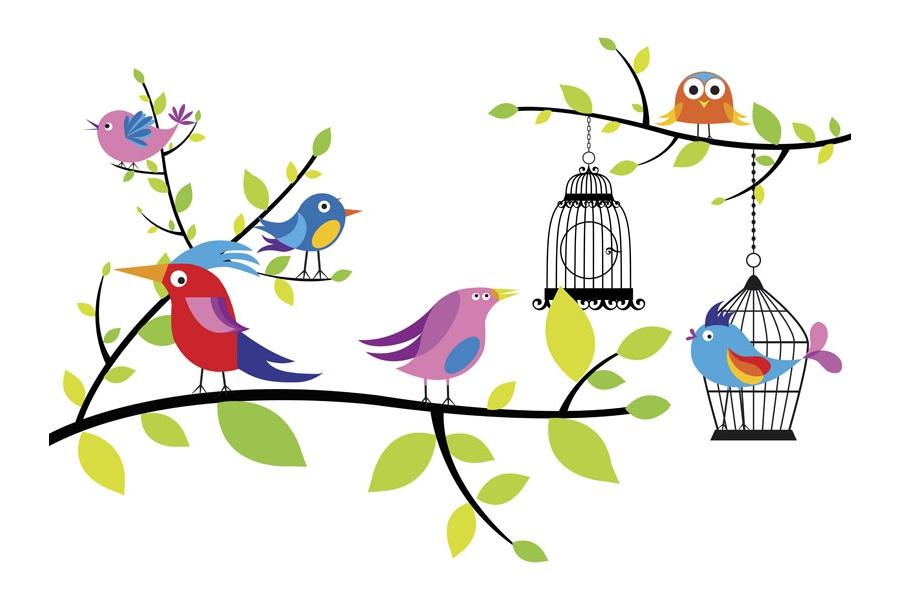 New bird room-bird-paper.jpg