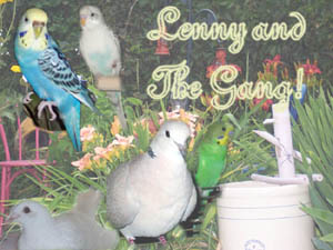 Lenny died last October-birds-lenny.jpg