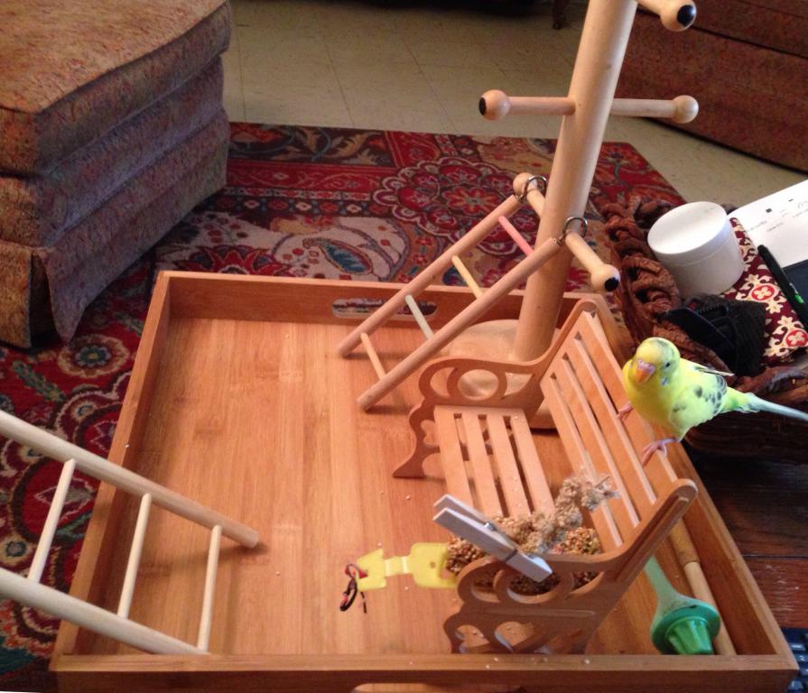 Homemade playground-image.jpg