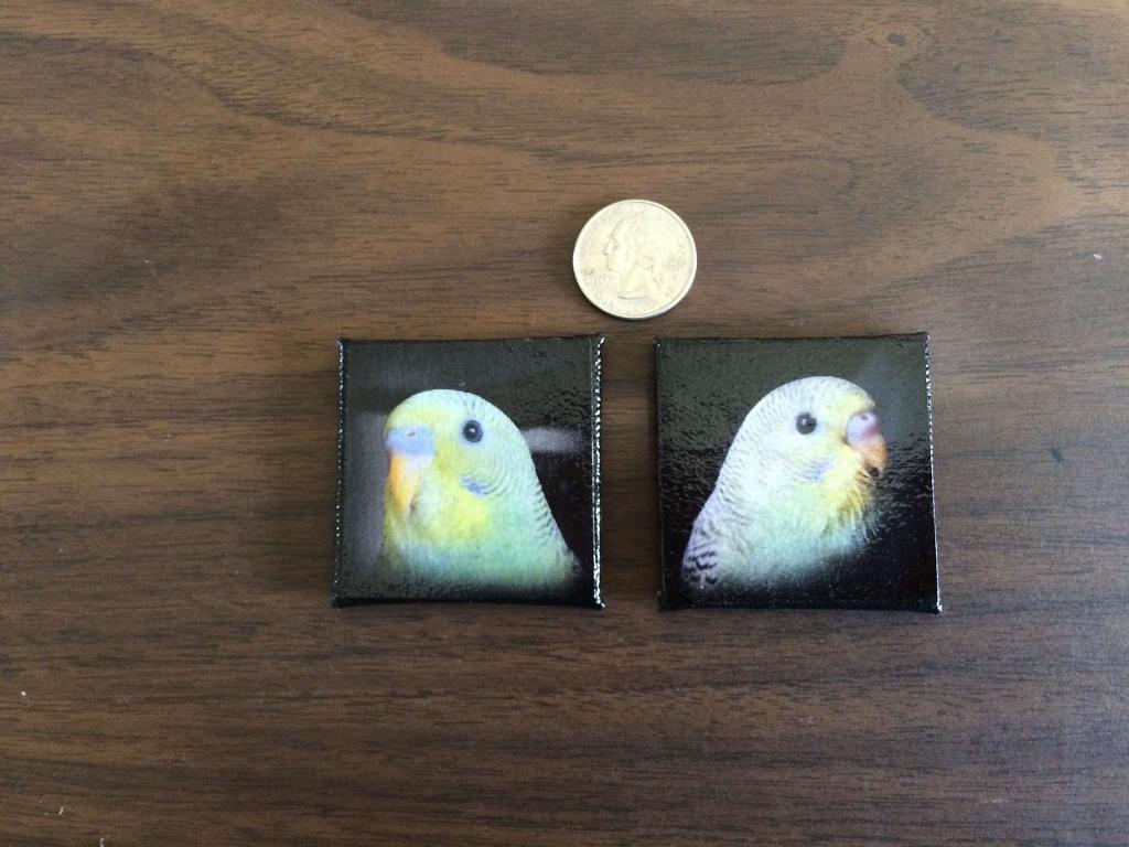 Mini Photo Canvas-image.jpg