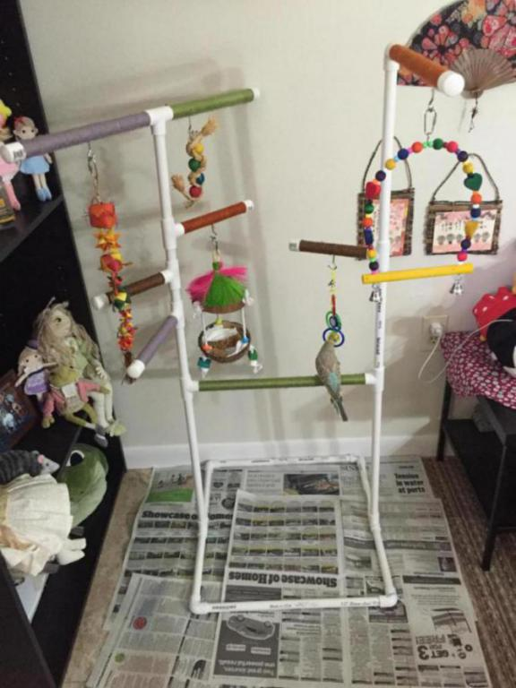Ran out of room for toys! Had to get creative...-image_1431966920672.jpg
