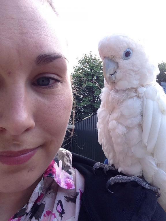 Visited a local Bird Sanctuary-image_1438960525958.jpg