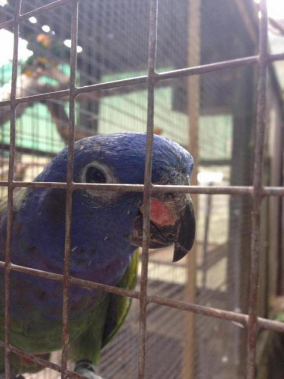 Visited a local Bird Sanctuary-image_1438960740112.jpg