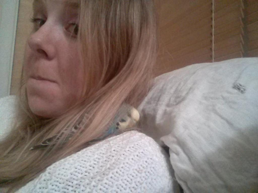 hmm I seem to have some budgie in my hair-img_20141120_193807.jpg