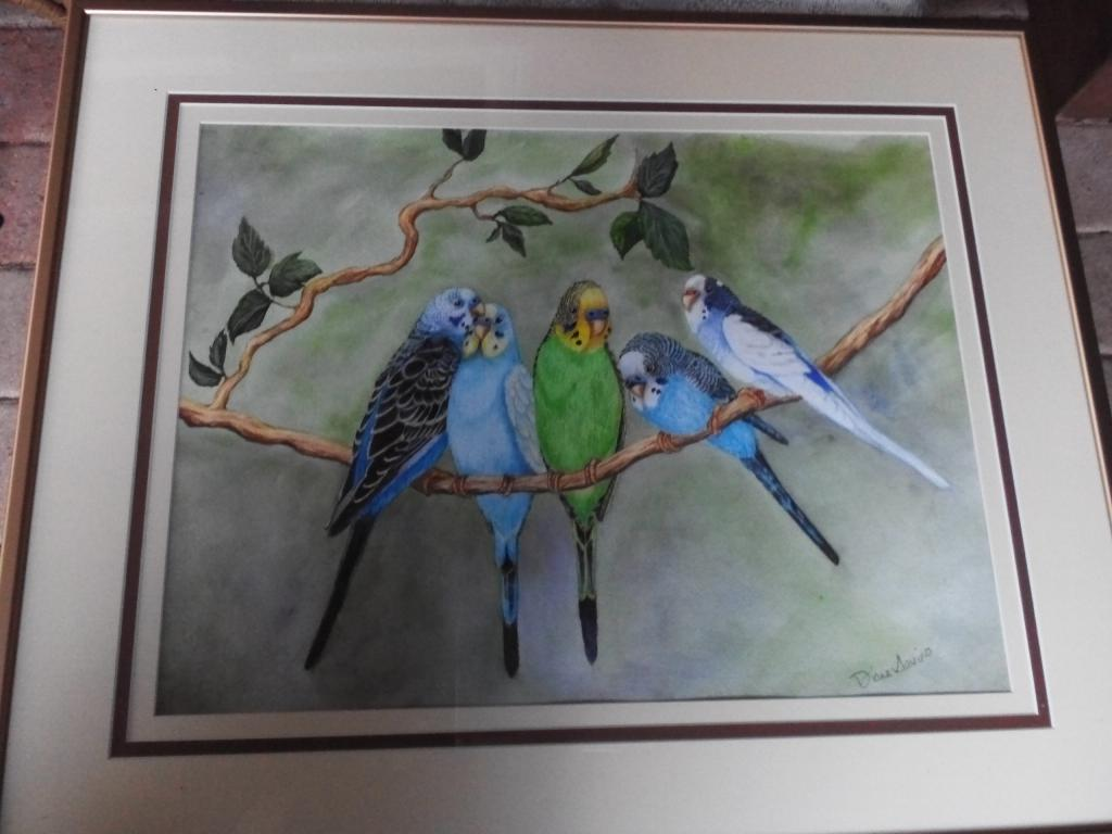 portrait of my budgies-img_20141203_152314.jpg