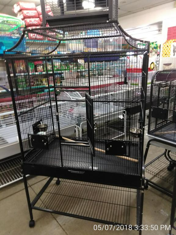 I want a bigger cage-img_20180507_153350.jpg