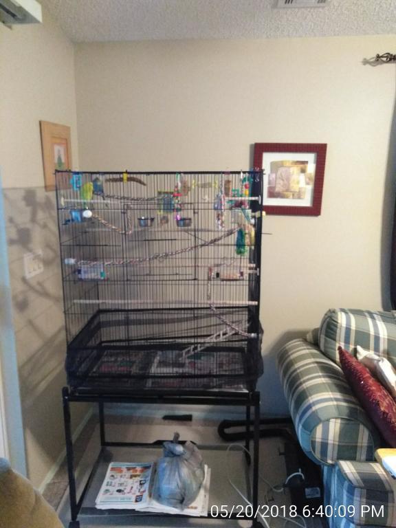 I want a bigger cage-img_20180520_184009.jpg