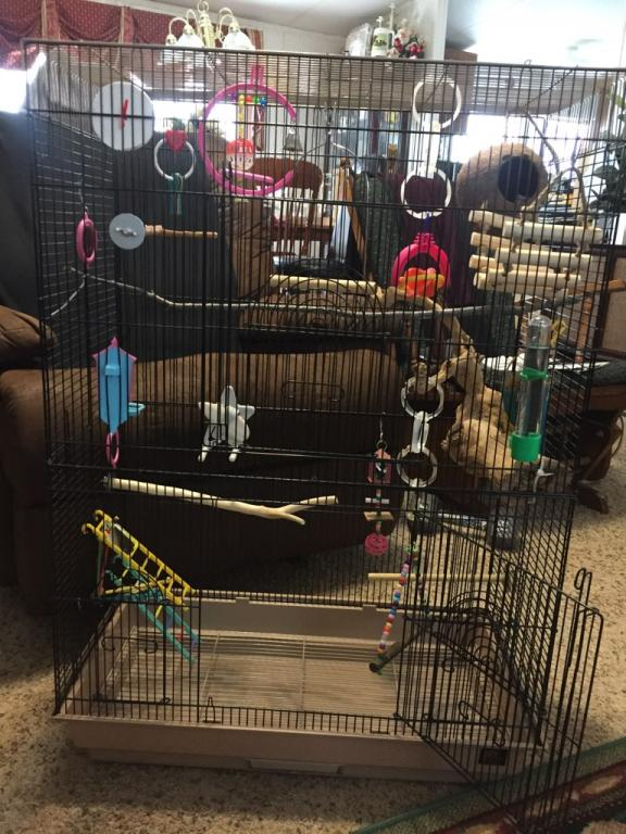 cage too full?-img_2646.jpg
