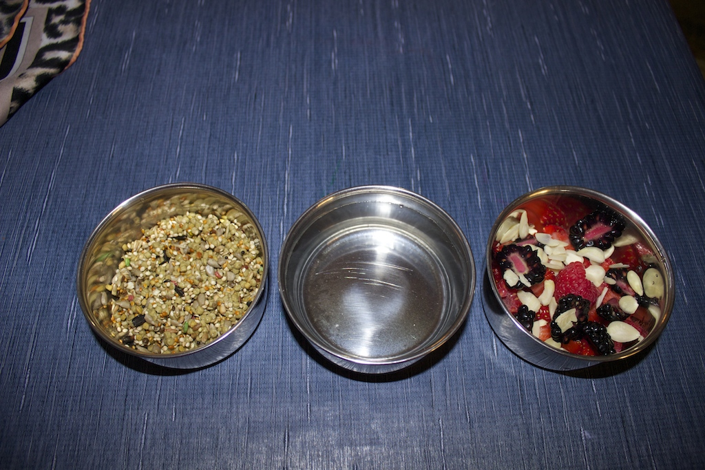 My budgies won't eat any vegetables, fruits or pellets. Help ?-img_3493.jpg