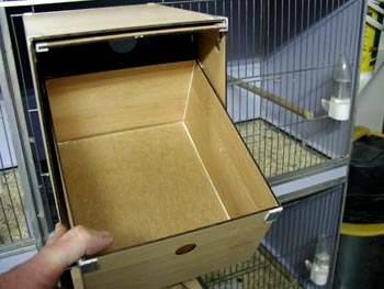 Looking for breeding boxes-nest_6.jpg