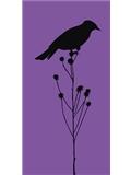 New bird room-panel2.jpg