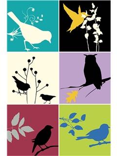 New bird room-panel4.jpg