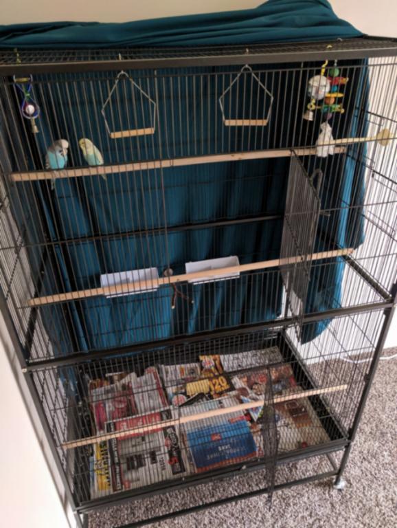 Prevue Hendryx F050 cage-screenshot_20181229-135204_1546109565226.jpg