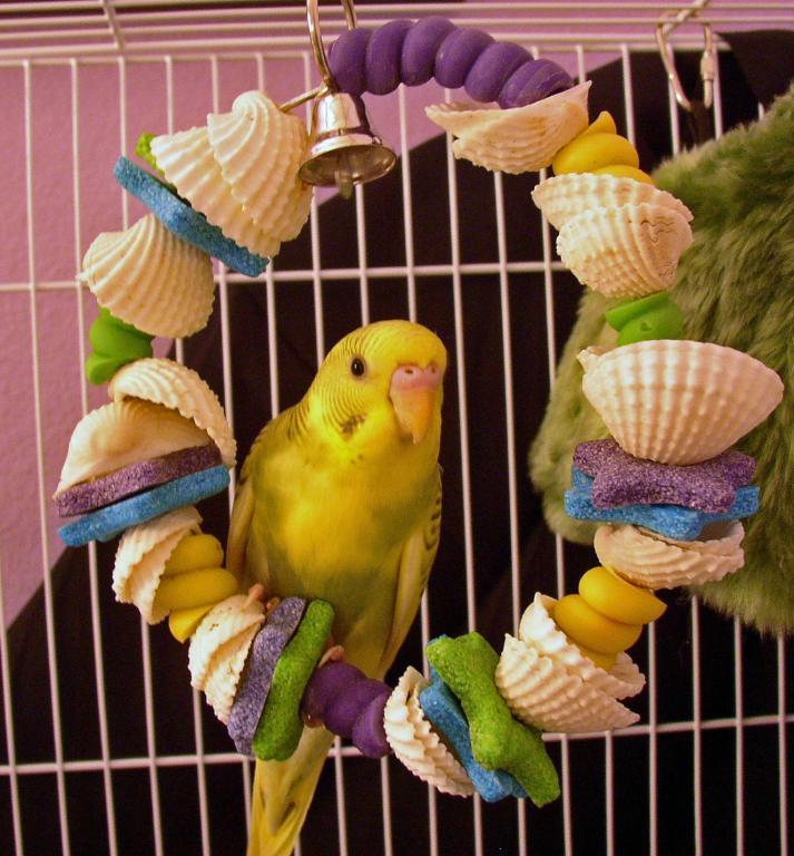 Sunny's First Photos-sunny-shells.jpg