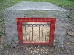 outdoor Aviary floor-suspended-converted-rabbits.jpg