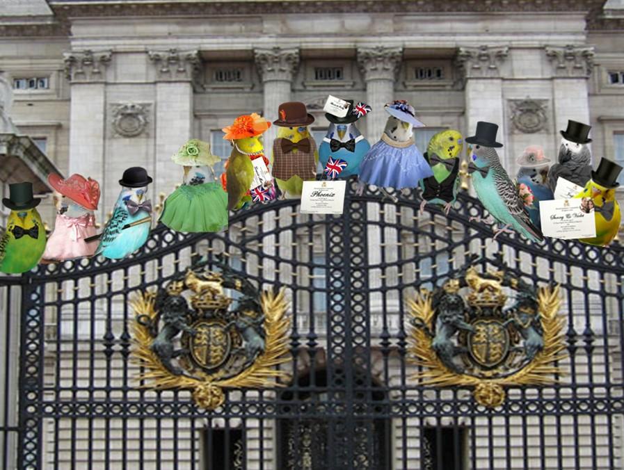 The Royal Wedding-royal-wedding-guests-lineup.jpg