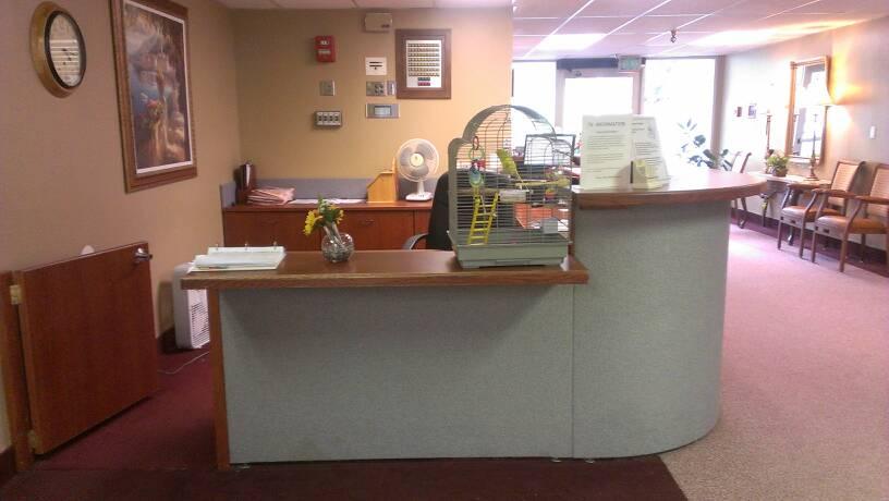 Receptionist Budgies.-uploadfromtaptalk1368933720489.jpg