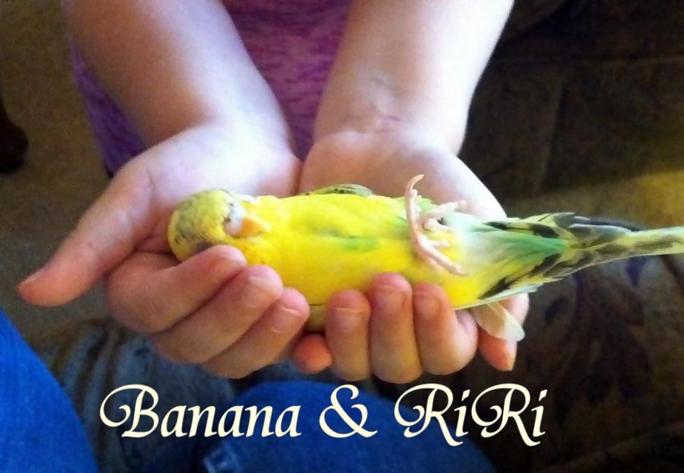 A bird in hand!