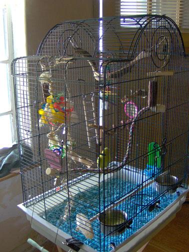 Sheldon's cage set-up